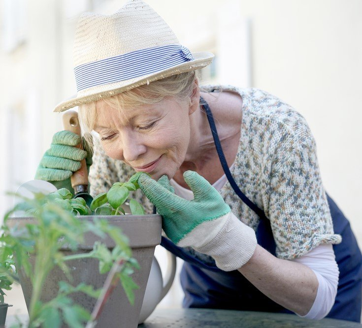 Elderly Lady Smells A Plant
