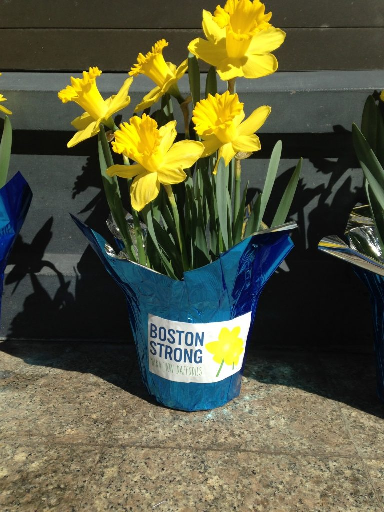 Yellow Flowers At Boston Marathon