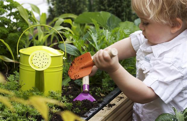 Kid Sized Gardening Tools