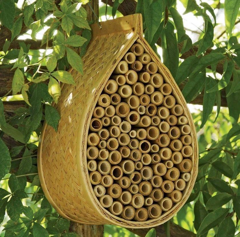 A Mason Bee House