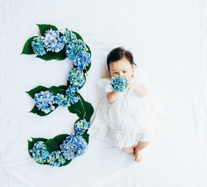 Three Year Month Old Girl With Hydrangeas