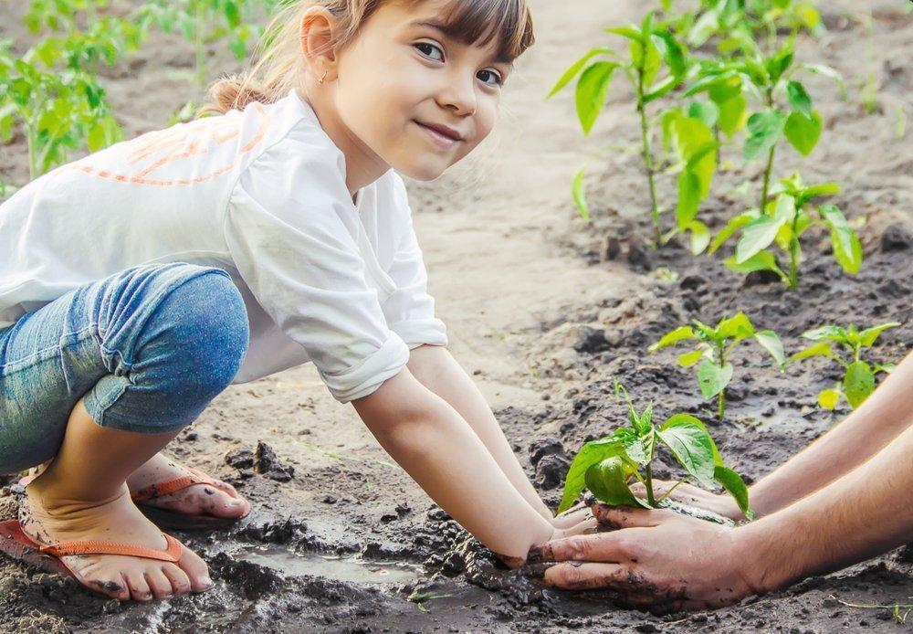 Little Girl Gardening Getting Dirty