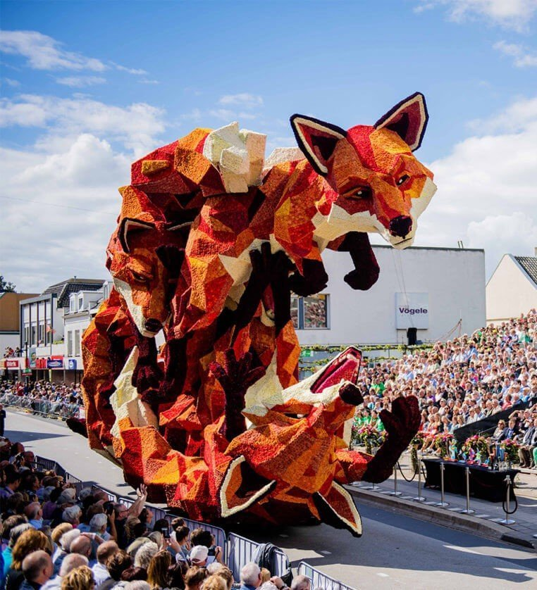 Netherland Flower Parade Foxes Playing