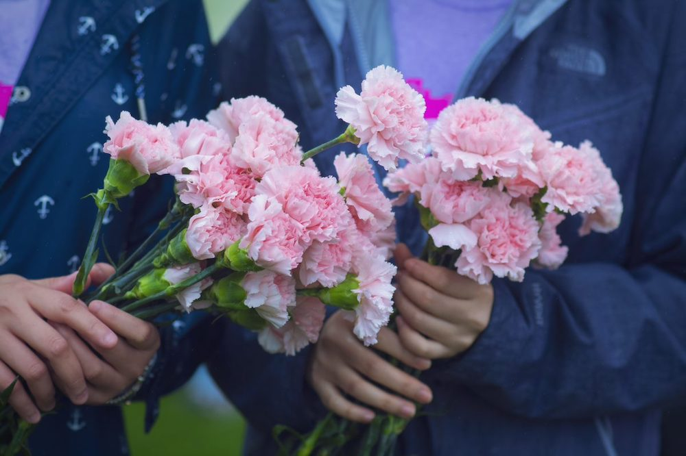 Beautiful Bloomex carnations in hands