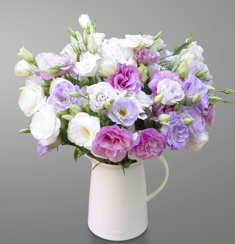Lisianthus flowers and their meaning